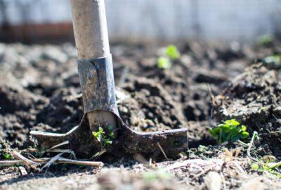 tips voor het verbouwen vna je tuin