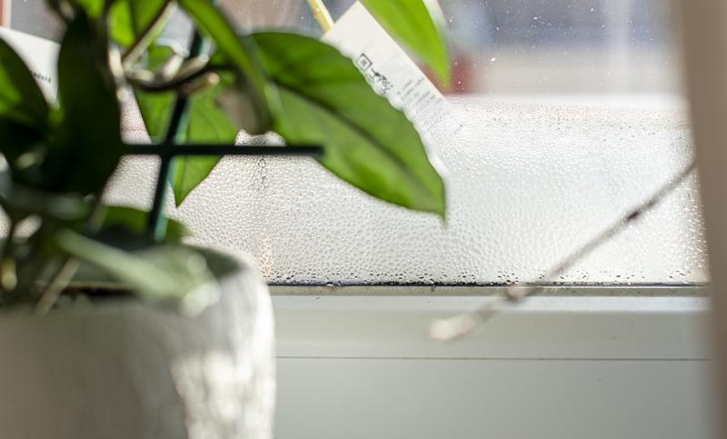 luchtvochtigheid in huis te voorkomen