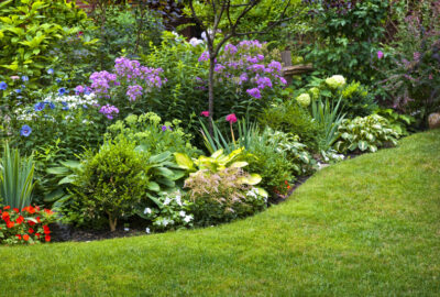 tuin-beplanten